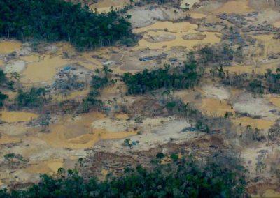 River of Gold movie stills