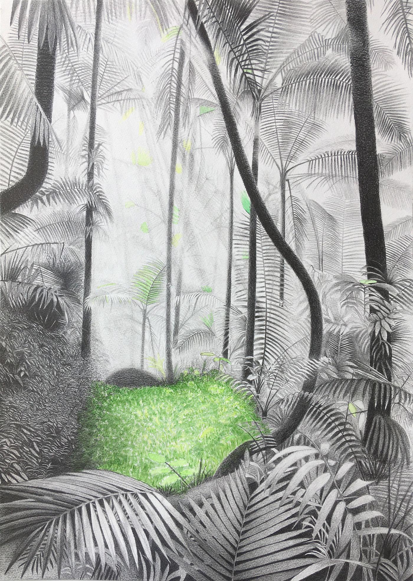 Judit Prieto Paradise